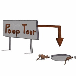 'The Daily Poo!' Latest News + Did you know that 25% of the world still has no access to basic sanitation!?